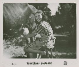 Flickorna i Småland - image 8