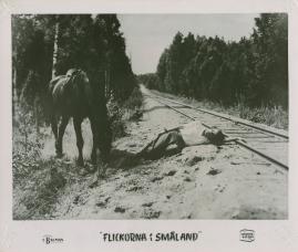 Flickorna i Småland - image 16