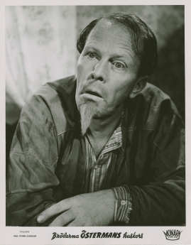 "Birgitta ""Bibbi"" Pramm-Johansson"