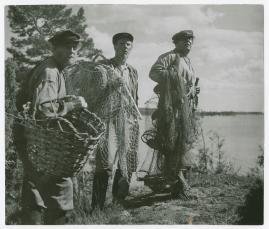 Bröderna Östermans huskors - image 53