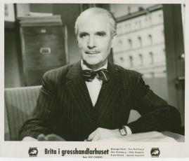 Brita i grosshandlarhuset - image 9