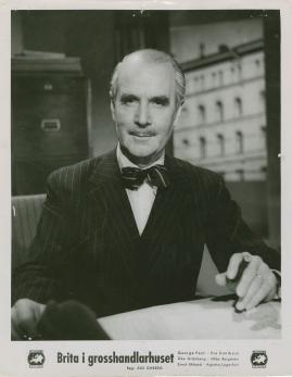 Brita i grosshandlarhuset - image 87