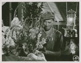 Johansson och Vestman - image 61