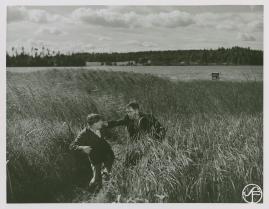 Johansson och Vestman - image 25