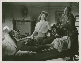 Johansson och Vestman - image 44