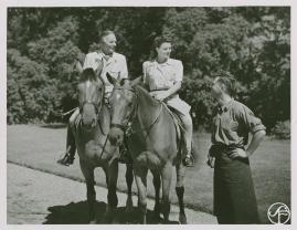 Johansson och Vestman - image 46