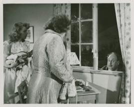 Agneta Lagerfelt - image 12