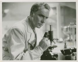 Arnold Sjöstrand - image 12