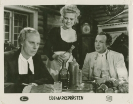 Olof Widgren - image 3