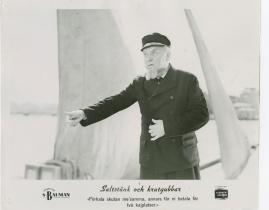 Sigurd Wallén - image 31