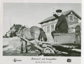 Saltstänk och krutgubbar : Liv och leverne i skärgården enligt Albert Engström - image 45