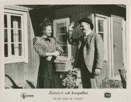 Saltstänk och krutgubbar : Liv och leverne i skärgården enligt Albert Engström - image 50