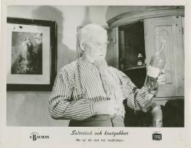 Saltstänk och krutgubbar : Liv och leverne i skärgården enligt Albert Engström - image 23