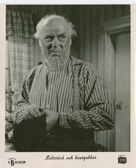 Sigurd Wallén - image 5