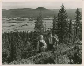 Alf Kjellin - image 113