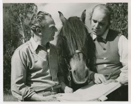 Sten Lindgren - image 23
