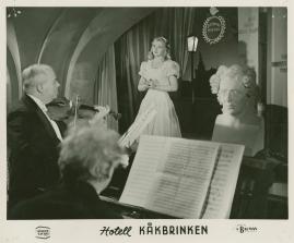 Hotell Kåkbrinken - image 12