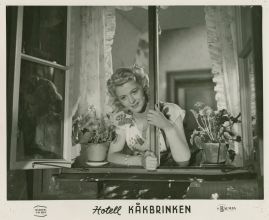Hotell Kåkbrinken - image 5