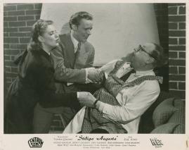 Stiliga Augusta - image 20