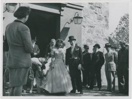 Stiliga Augusta - image 48