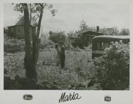 Maria - image 49