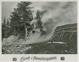 Livet i Finnskogarna - image 2