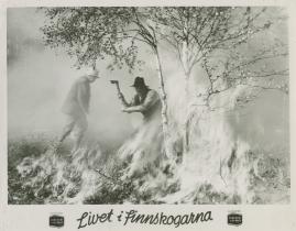 Livet i Finnskogarna - image 13