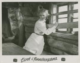 Livet i Finnskogarna - image 40
