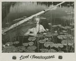 Livet i Finnskogarna - image 25
