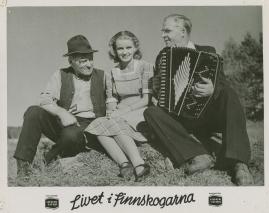 Livet i Finnskogarna - image 26