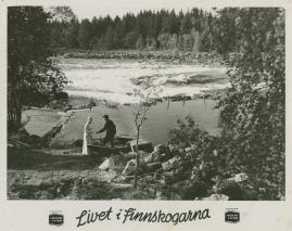 Livet i Finnskogarna - image 45