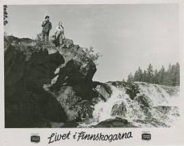 Livet i Finnskogarna - image 29