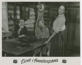 Livet i Finnskogarna - image 50