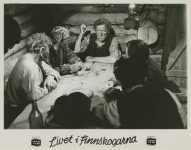 Livet i Finnskogarna - image 17