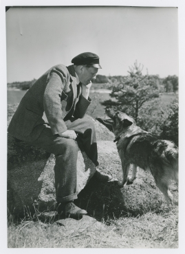 John Elfström - image 15