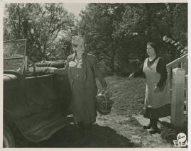Julia Cæsar - image 3