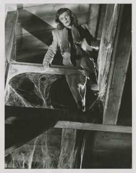 Anita Björk - image 53