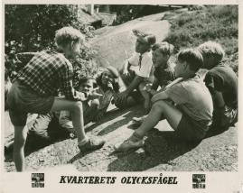 Kvarterets olycksfågel - image 12