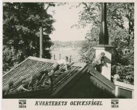 Kvarterets olycksfågel - image 22