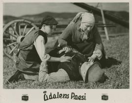 Ådalens poesi : En film om kärnfolk tillägnad Pelle Molins minne - image 14