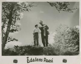 Ådalens poesi : En film om kärnfolk tillägnad Pelle Molins minne - image 38