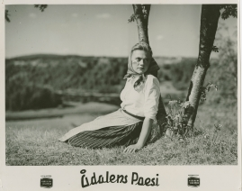 Ådalens poesi : En film om kärnfolk tillägnad Pelle Molins minne - image 48