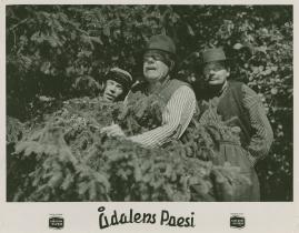Ådalens poesi : En film om kärnfolk tillägnad Pelle Molins minne - image 54