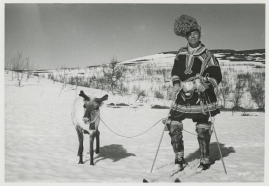 Peter Höglund - image 19