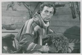 Peter Höglund - image 15