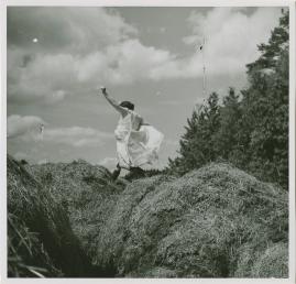 Lilla Märta kommer tillbaka eller Grevinnans snedsteg eller Den vilda jakten efter det hemliga dokumentet - image 87