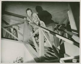 Lars Hård - image 3