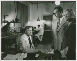 Gunnel Broström - image 18
