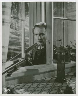 Arnold Sjöstrand - image 45