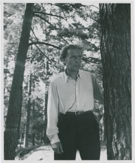 Arnold Sjöstrand - image 17
